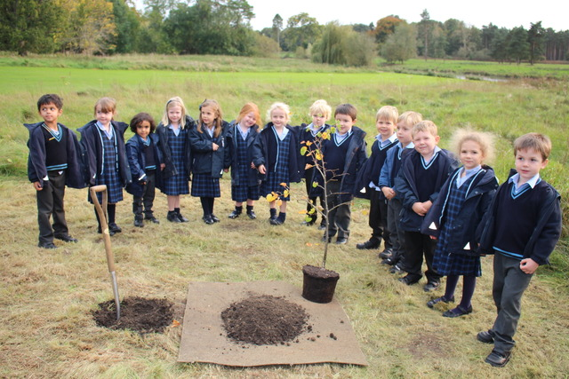 Culford Reception Tree Plating - Reception Class with their new tree