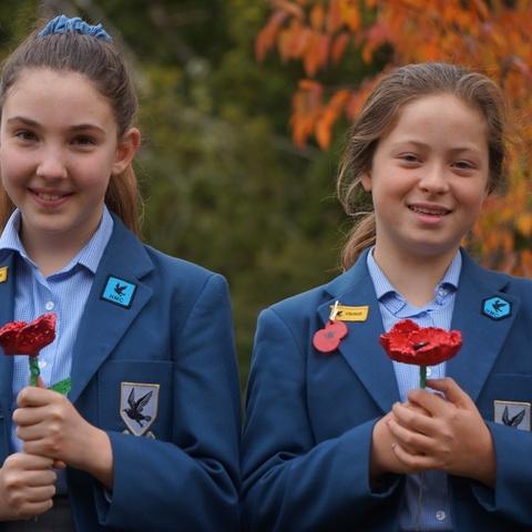 Danes Hill School Field of Poppies (1)